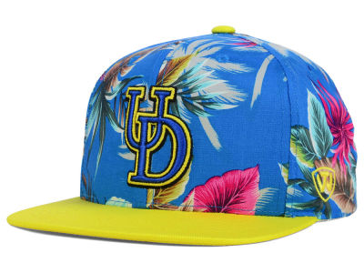 Delaware Blue Hens Top of the World NCAA Waverunner Snapback Hat