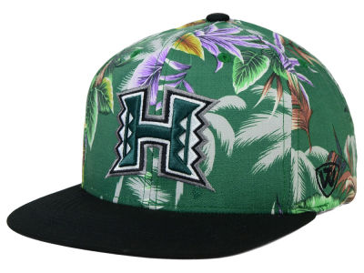 Hawaii Warriors Top of the World NCAA Waverunner Snapback Hat