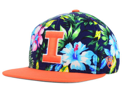 Illinois Fighting Illini Top of the World NCAA Waverunner Snapback Hat