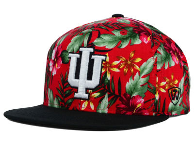 Indiana Hoosiers Top of the World NCAA Waverunner Snapback Hat