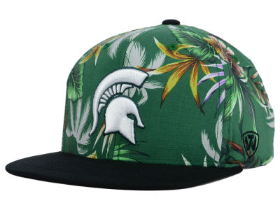Michigan State Spartans Top of the World NCAA Waverunner Snapback Hat