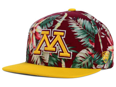 Minnesota Golden Gophers Top of the World NCAA Waverunner Snapback Hat