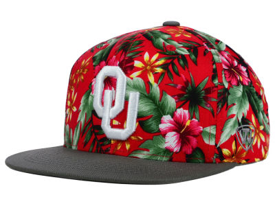 Oklahoma Sooners Top of the World NCAA Waverunner Snapback Hat