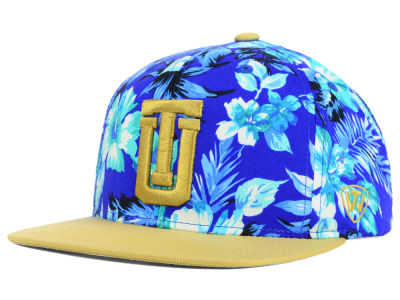 Tulsa Golden Hurricane Top of the World NCAA Waverunner Snapback Hat