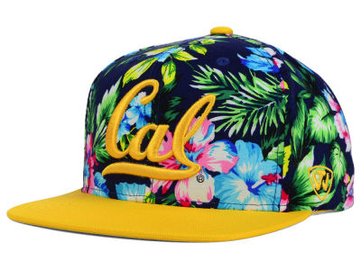 California Golden Bears Top of the World NCAA Waverunner Snapback Hat