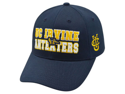 UC Irvine Anteaters 2 for $28 Top of the World NCAA Teamwork Cap