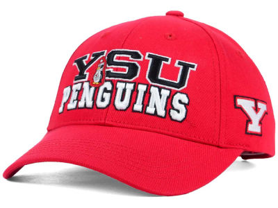 Youngstown State Penguins 2 for $28 Top of the World NCAA Teamwork Cap