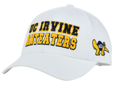 UC Irvine Anteaters NCAA 2 for $25 Top of the World NCAA Teamwork Cap