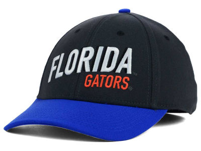 Florida Gators Nike NCAA Best L91 Swooshflex Cap