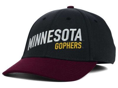 Minnesota Golden Gophers Nike NCAA Best L91 Swooshflex Cap