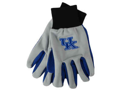 Kentucky Wildcats Team Color Palm Gloves
