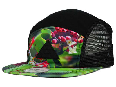 Fitted Hawaii Nihi Iliahi 5 Panel Camper