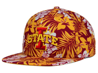 Iowa State Cyclones New Era NCAA Wowie 9FIFTY Snapback Cap