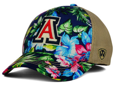 Arizona Wildcats Top of the World NCAA Shore Stretch Cap