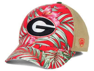 Georgia Bulldogs Top of the World NCAA Shore Stretch Cap