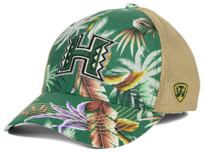 Hawaii Warriors Top of the World NCAA Shore Stretch Cap