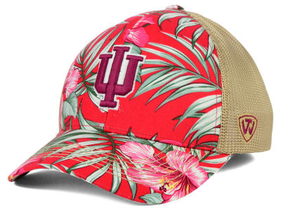 Indiana Hoosiers Top of the World NCAA Shore Stretch Cap