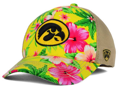 Iowa Hawkeyes Top of the World NCAA Shore Stretch Cap