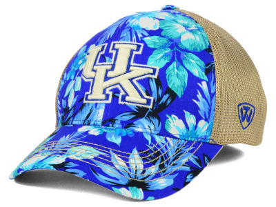 Kentucky Wildcats Top of the World NCAA Shore Stretch Cap