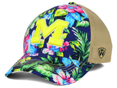 Michigan Wolverines Top of the World NCAA Shore Stretch Cap
