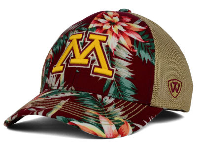 Minnesota Golden Gophers Top of the World NCAA Shore Stretch Cap