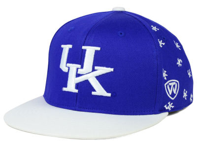 Kentucky Wildcats Top of the World NCAA All Flocking Cap