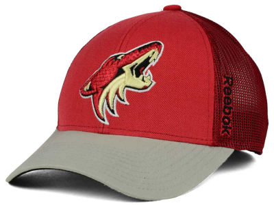 Arizona Coyotes Reebok NHL 2015 TNT Adjustable Cap