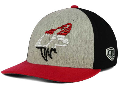 Arizona Coyotes Old Time Hockey NHL Win Streak Flex Hat