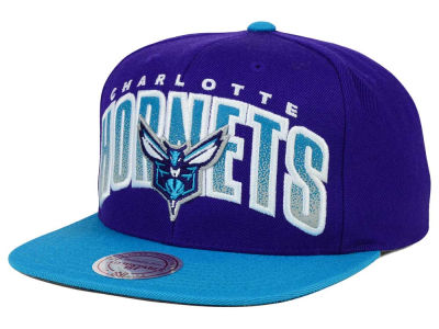 Charlotte Hornets Mitchell and Ness NBA Double Bonus Snapback Cap