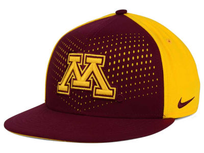 Minnesota Golden Gophers Nike NCAA True Seasonal Snapback Cap