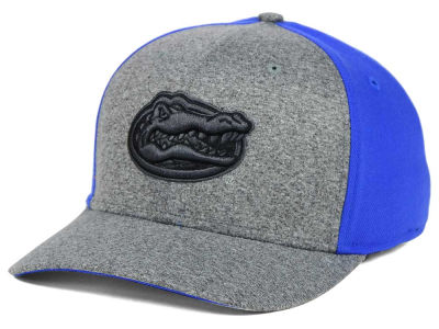 Florida Gators Nike NCAA Jersey Color Blocked Flex Cap