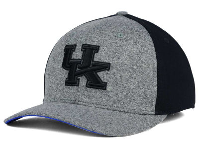 Kentucky Wildcats Nike NCAA Jersey Color Blocked Flex Cap