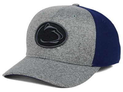 Penn State Nittany Lions Nike NCAA Jersey Color Blocked Flex Cap