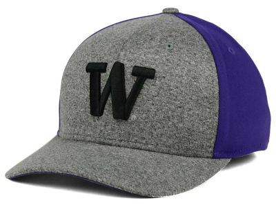 Washington Huskies Nike NCAA Jersey Color Blocked Flex Cap