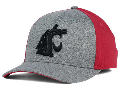Washington State Cougars Nike NCAA Jersey Color Blocked Flex Cap