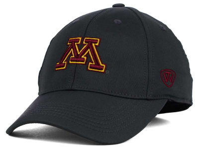 Minnesota Golden Gophers Top of the World NCAA Alliance Gray Cap
