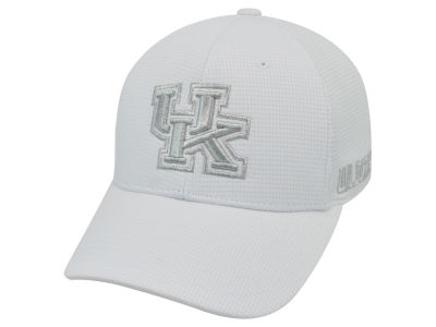 Kentucky Wildcats Top of the World NCAA Diamond Flex Cap