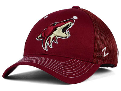 Arizona Coyotes Zephyr NHL Screenplay Flex Hat
