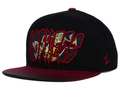 Minnesota Golden Gophers Zephyr NCAA Youth Graffiti Hat