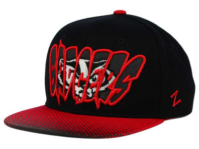 Wisconsin Badgers Zephyr NCAA Youth Graffiti Hat