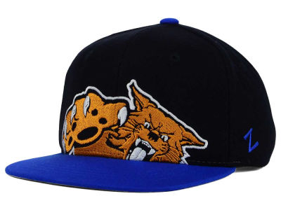 Kentucky Wildcats Zephyr NCAA Youth Peek Snapback Hat