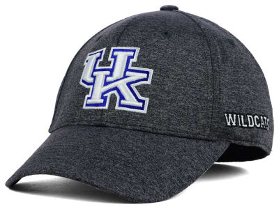 Kentucky Wildcats Top of the World NCAA Callout Cap