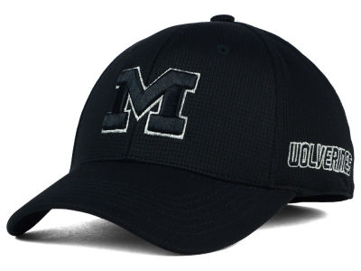 Michigan Wolverines Top of the World NCAA Diamond Flex Cap