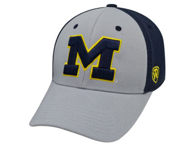 Michigan Wolverines Top of the World NCAA Albatross 2 Cap