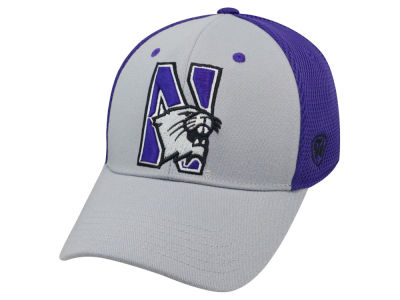 Northwestern Wildcats Top of the World NCAA Albatross 2 Cap