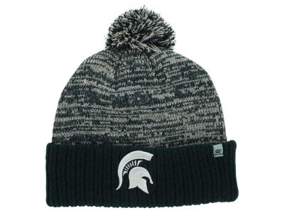Michigan State Spartans NCAA Team Color Dense Knit