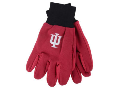 Indiana Hoosiers Team Color Palm Gloves