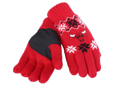 Chicago Bulls Lodge Glove