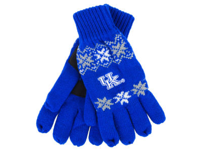Kentucky Wildcats Lodge Glove
