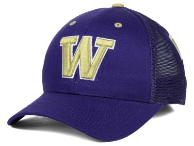 Washington Huskies Zephyr NCAA Screenplay Adjustable Hat